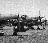 Airacobras of the 67th Fighter Squadron with shark mouth