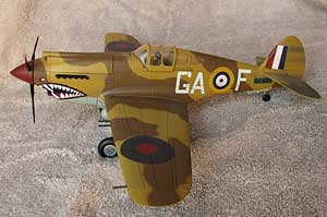P40 model in North African Air Force colors